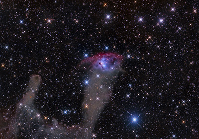 NGC 1788 The Fox Face Nebula in Orion  ASA N10 F3.59 FLI Microline 11002 OSC 26X600sec -30C New Mexico Skies Observatory Nov 2012
