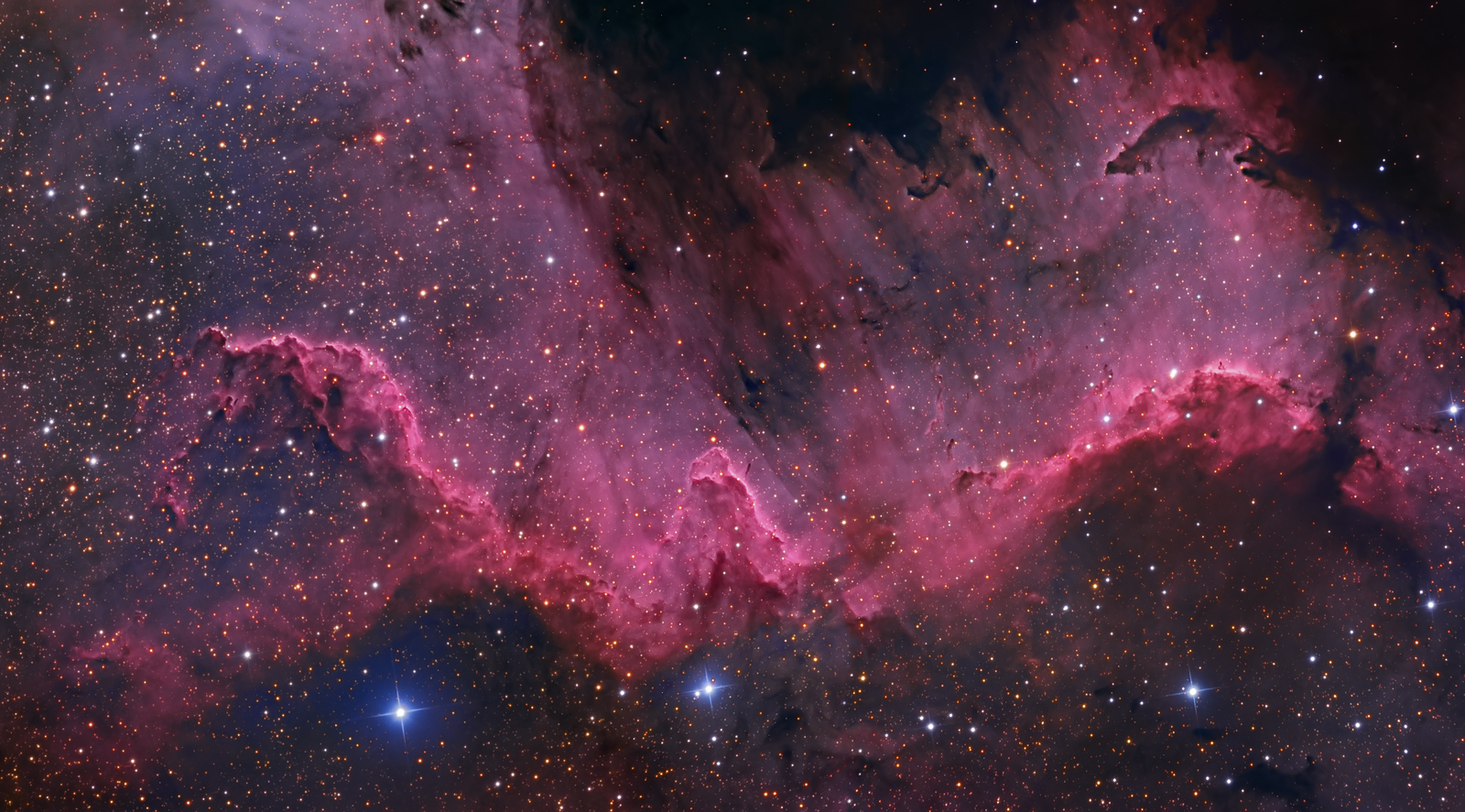 "The Cygnus Wall 2 frames Mosaic 16"" RCOS Apogee F16 NMSkies Remote June/July 2013 HaLRGB (4,3,1.5,1.5,1.5) each frame"